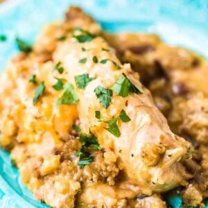 Blue plate with chicken and stuffing