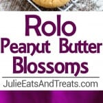 Rolo Peanut Butter Blossom Cookies Recipe ~ Soft Chewy Peanut Butter Blossoms with a Rolo in the Middle! Quick, Easy Christmas Cookie Perfect for the Holidays!