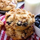 Blueberry Crumb Muffins Recipe ~ Comforting, Homemade Blueberry Muffins are the Perfect Morning Treat! These Muffins are Perfectly Moist and Delicious, Bursting with Juicy Blueberries with a Crumb Topping!