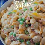Macaroni Salad Pinterest image