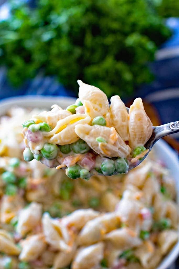 Spoonful of macaroni salad