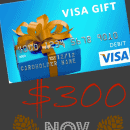 Fall Into Christmas $300 Visa Card Giveaway!