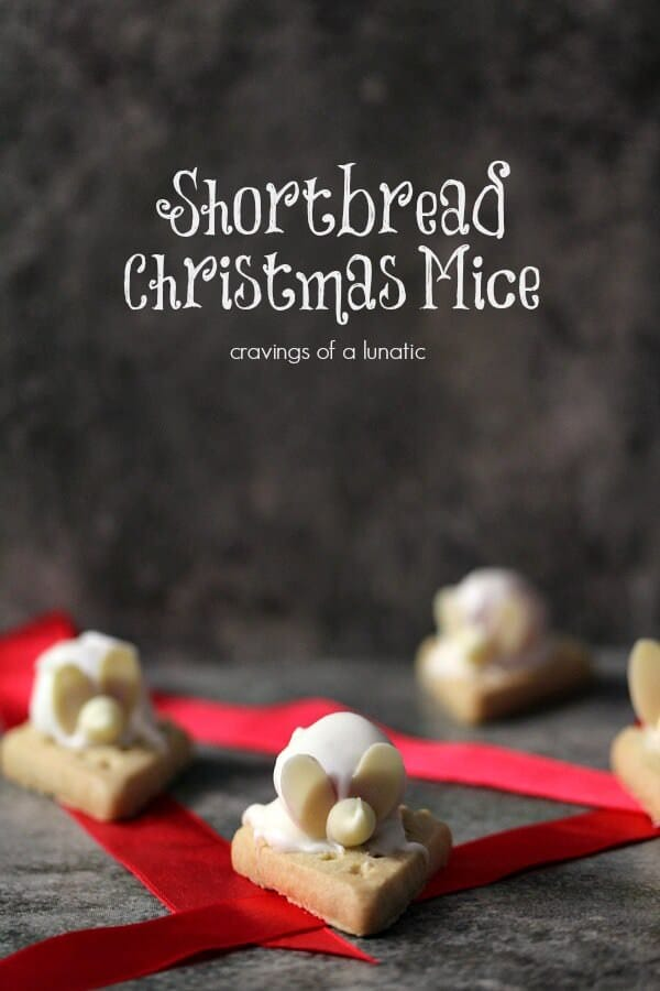 shortbread-mice-by-cravings-of-a-lunatic-3