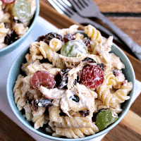 Cashew Chicken Rotini Salad ~ Loaded with Cashews, Grapes, Chicken, Pasta and Dried Cranberries!