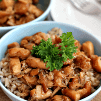 Crock Pot Chicken Teriyaki ~ Super easy and waiting for your in your crock pot when you get home!