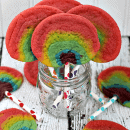 Rainbow Sugar Cookies Pops ~ Super easy and fun cookies that will put a smile on anyone's face!
