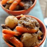 Rustic Beef Stew l Crock Pot Cuisine Meal Review