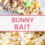 Pin Image for Bunny Bait