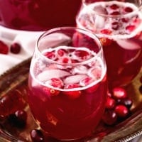 Skinny Spiced Cranberry Punch Recipe ~ A Delicious Light Drink! A Mixture of Cranberry, Pineapple Juice and Ginger Ale and Spiced with Cinnamon. Perfect for Holiday Parties!