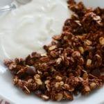 A white bowl of vanilla yogurt and nutella granola