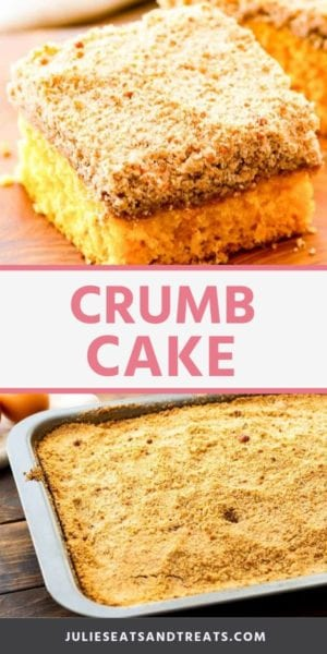crumb cake recipe Pins
