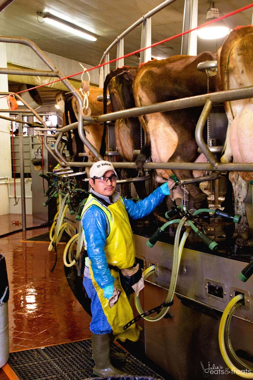 RIverview Milking