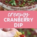 Collage with top image of cranberry dip in a glass bowl, middle pink banner with white text reading creamy cranberry dip, and bottom image of hand holding a cracker with creamy cranberry dip on it