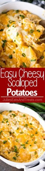 Easy Cheesy Scalloped Potatoes ~ The Perfect Side Dish for Your Dinner or Holiday Meal! Fresh Hand Cut Potatoes Smothered in a Homemade Cheese Sauce and Baked Until Golden Brown!