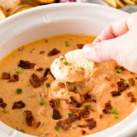 Slow Cooker Cheese Dip with Ranch and Chicken