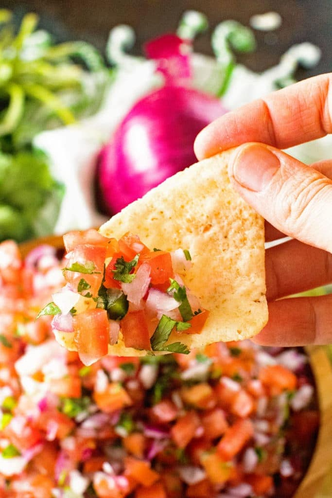 Hand holding tortilla chip with pico de gallo on it