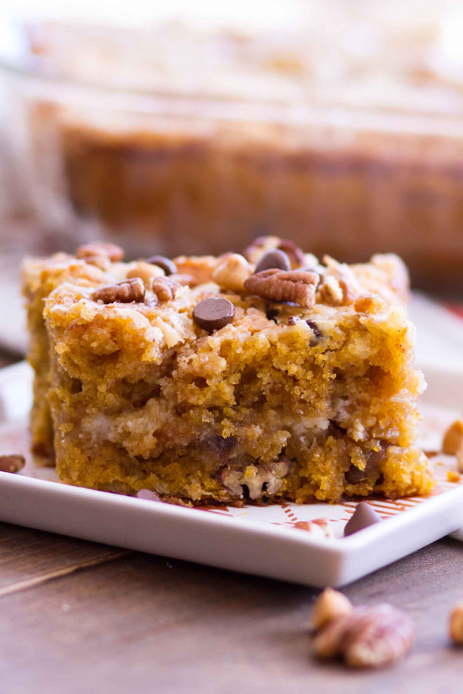 Pumpkin Cake Recipe topped with pecans, chocolate chips and butterscotch chips.