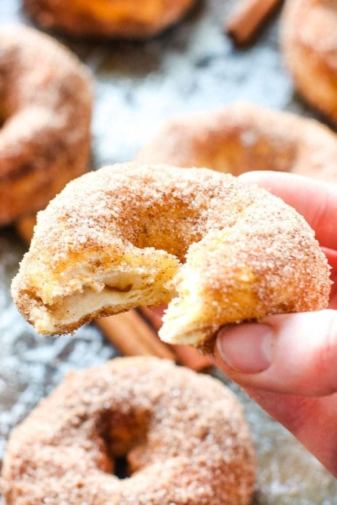 Hand holding an Air Fryer Donuts with cinnamon sugar