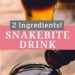 Pinterest Image of Snakebite