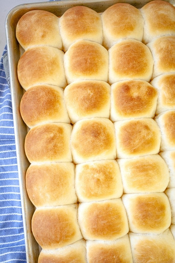 Overhead image of baked dinner rolls on baking sheet.