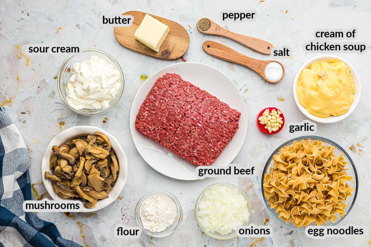 Hamburger Stroganoff Ingredients overhead view on light background