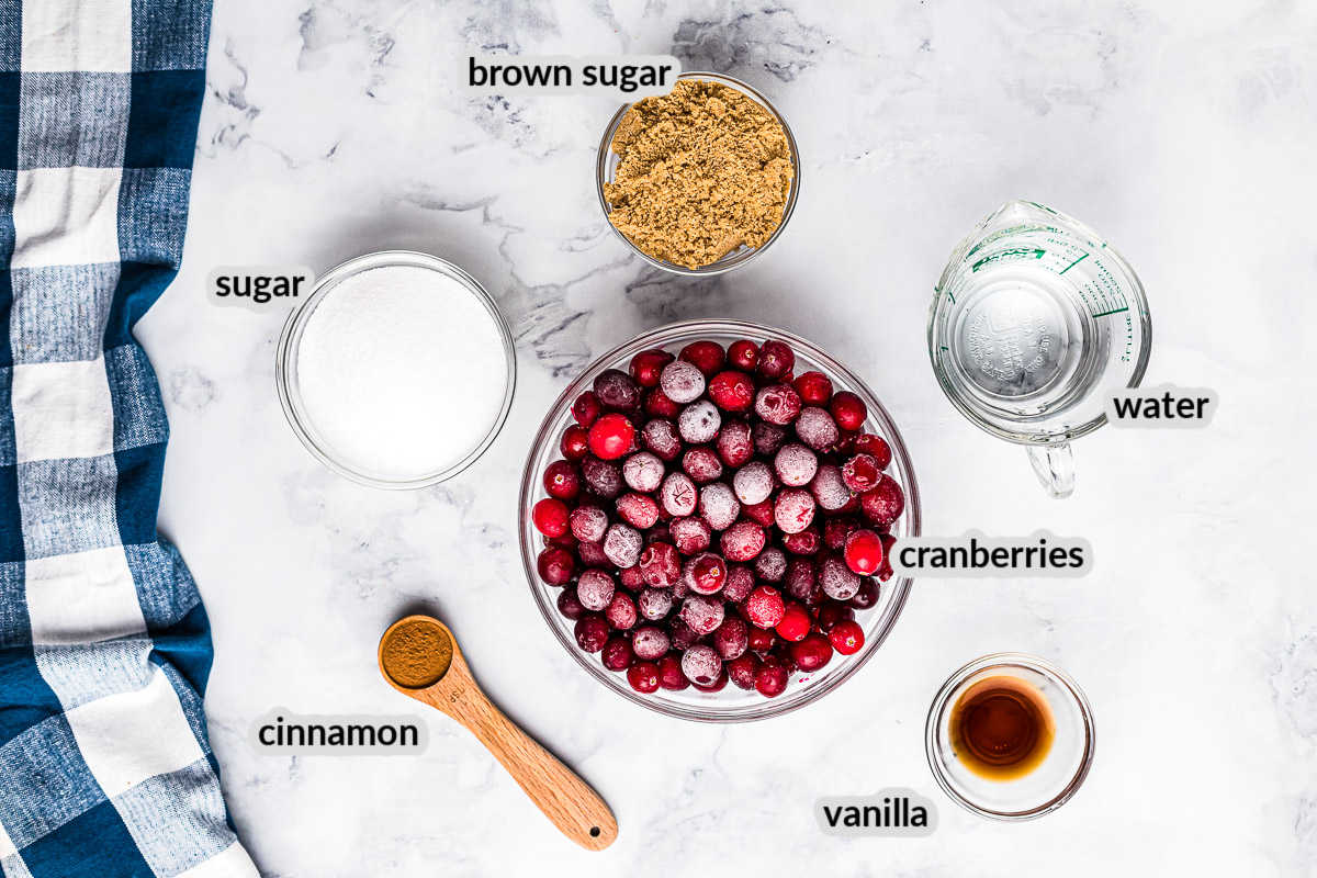 Overhead Instant Pot Cranberry Sauce Ingredients
