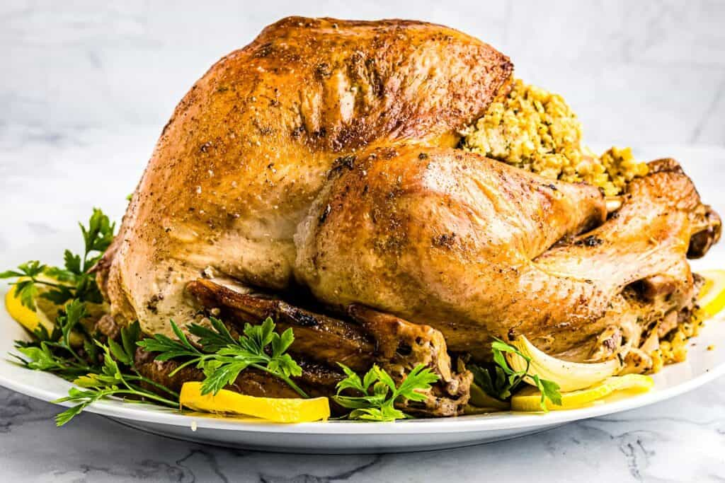 Easy Roast Turkey on plate