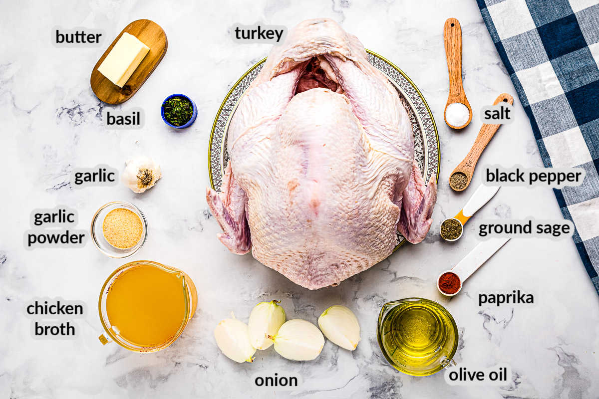 Overhead image of Roast Turkey Ingredients