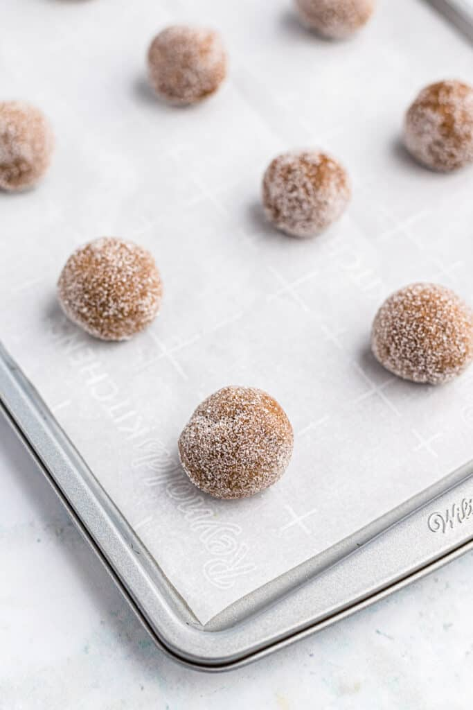 Dough balls of molasses cookie dough rolled in sugar on a baking sheet