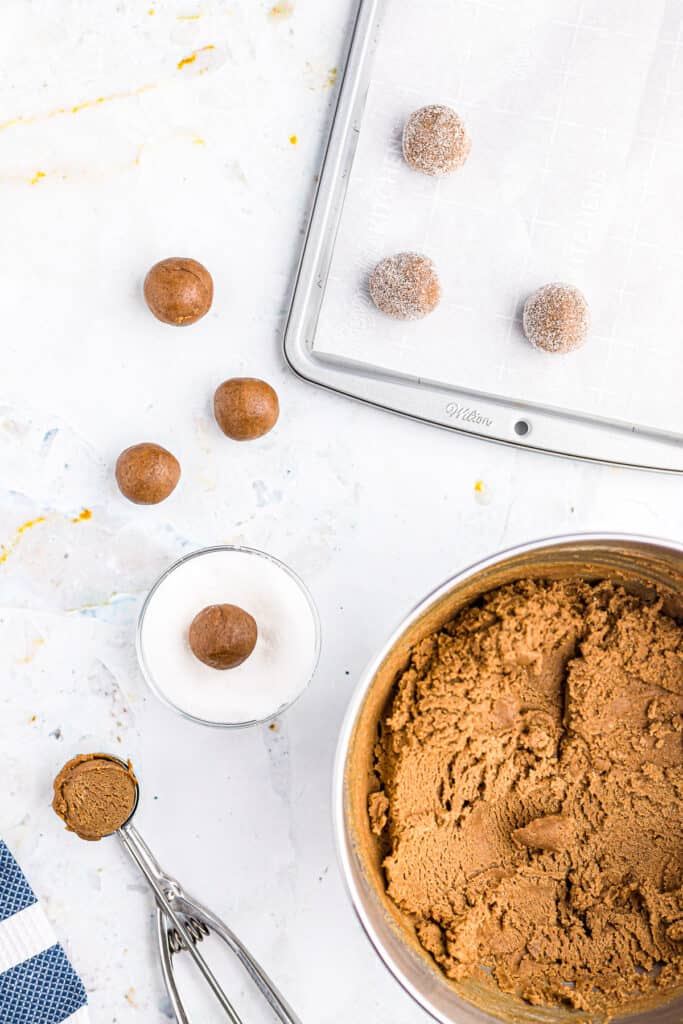 Overhead image of molasses cookie dough and cookie scoop