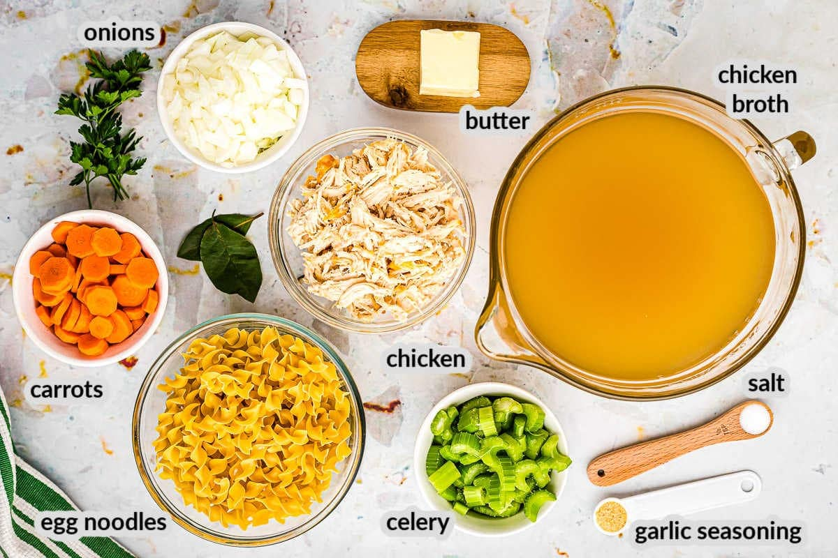 Overhead Image of Chicken Noodle Soup Ingredients