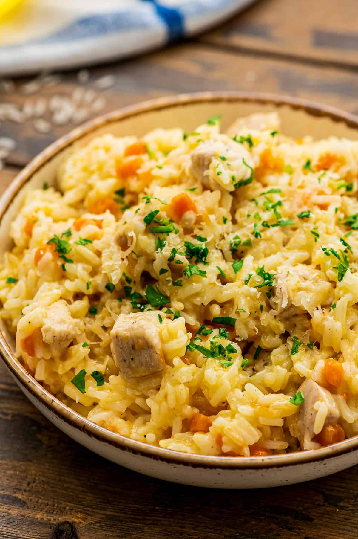 Bowl of Chicken and Rice with carrots topped with chopped parsley