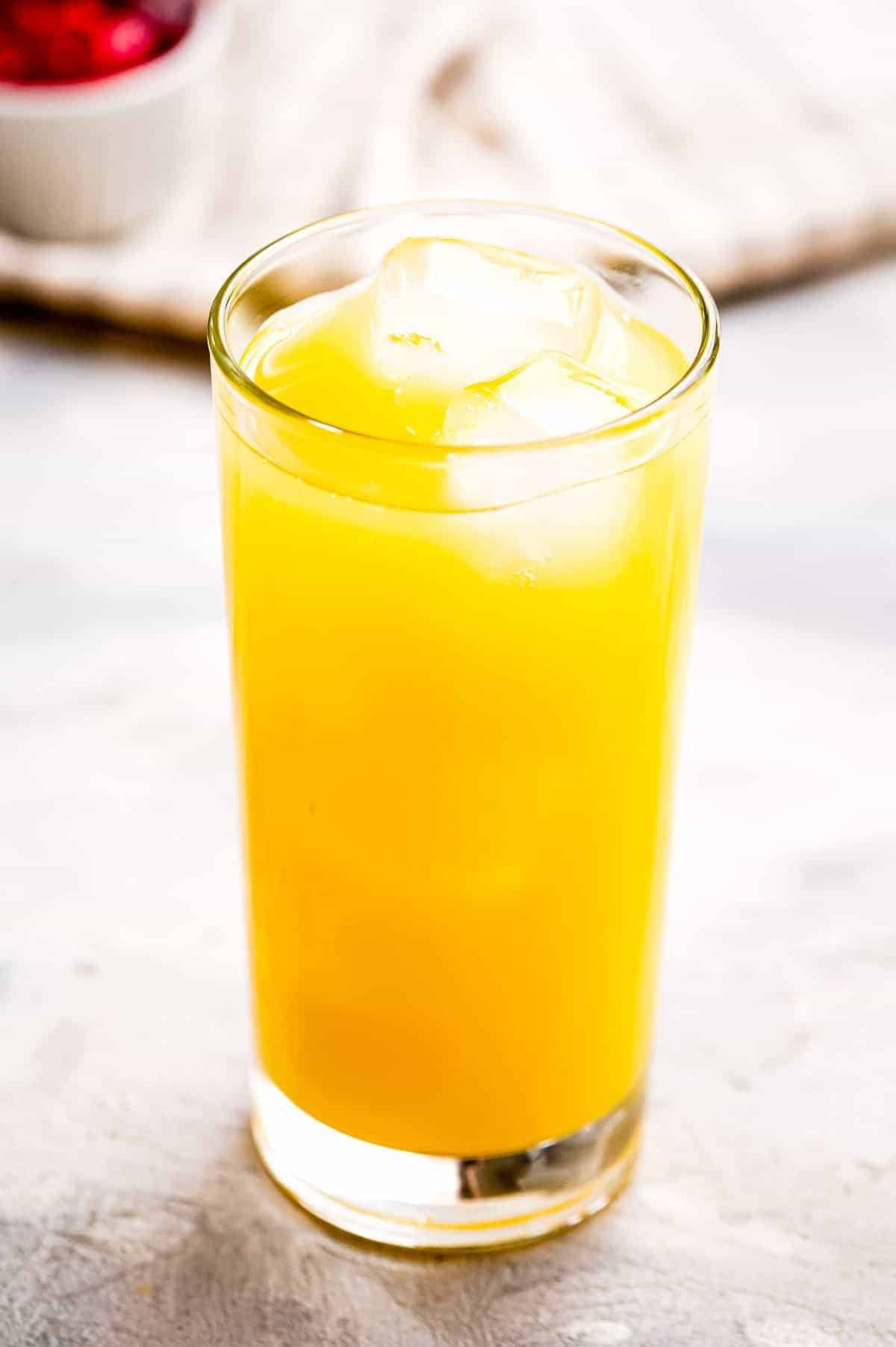 High ball glass with orange juice and ice cubes