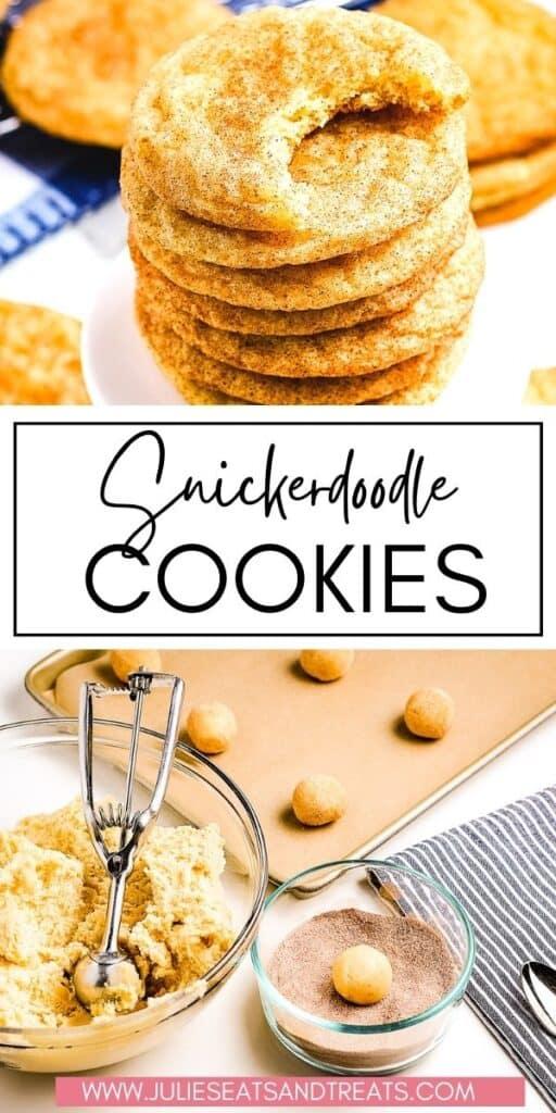 Snickerdoodle Cookies JET Pin Image