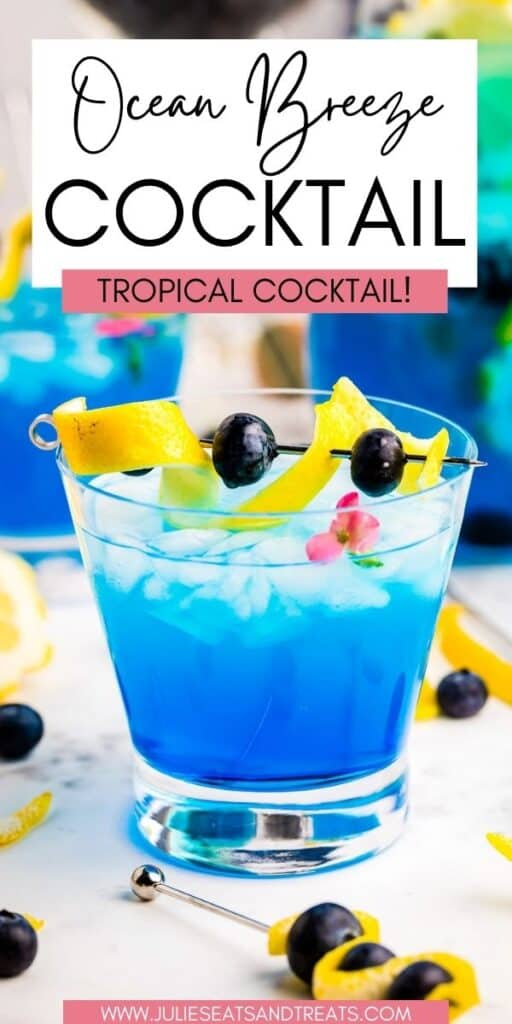 Ocean Breeze Cocktail JET Pin Image