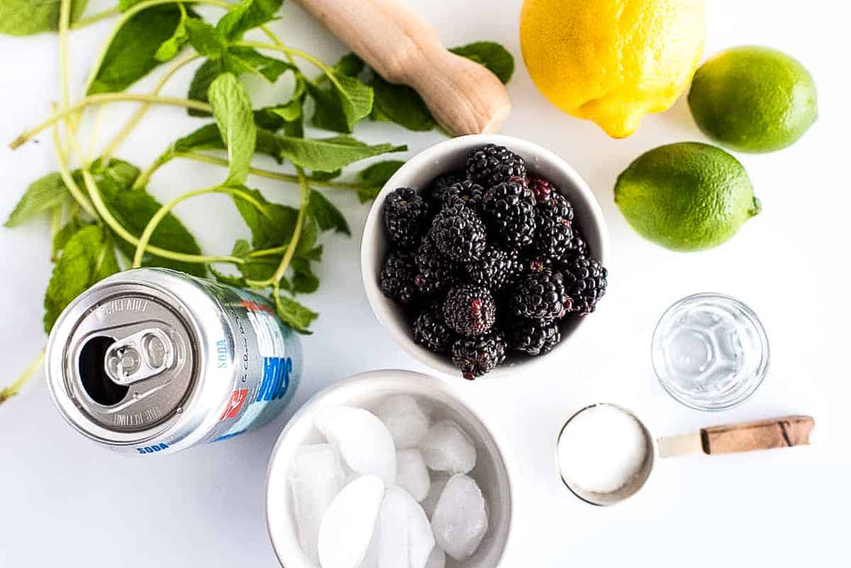 Overhead Image of Blackberry Mojito Ingredients
