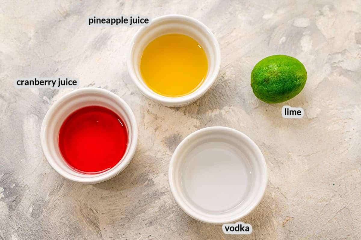 Overhead image of Bay Breeze Ingredients