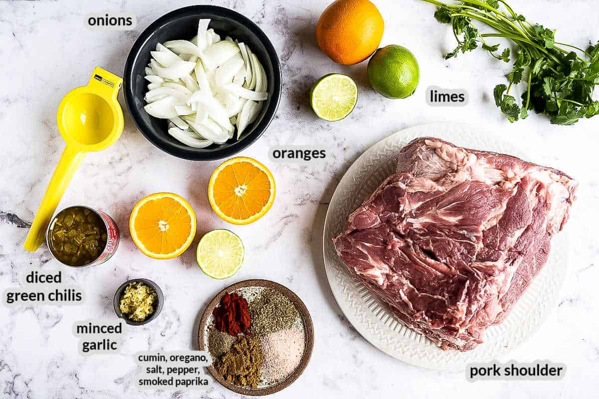 Overhead image of carnitas Ingredients