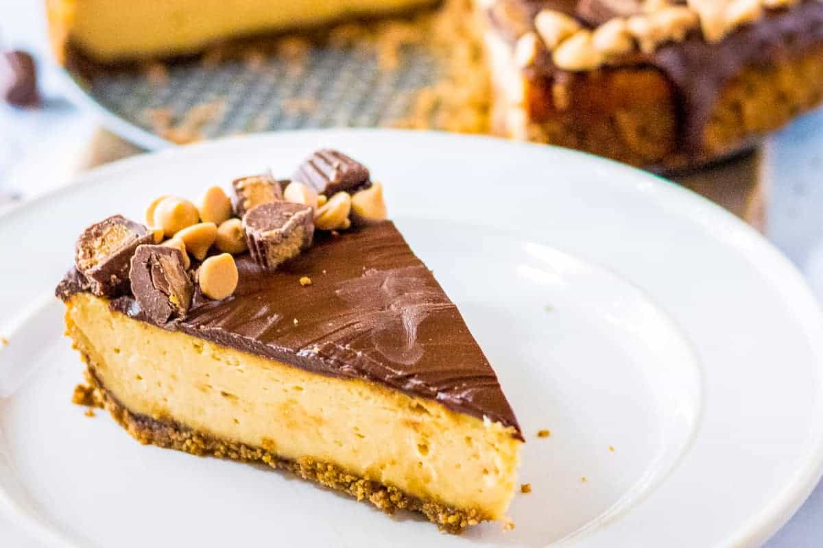Slice of Peanut Butter Cup Cheesecake on white plate
